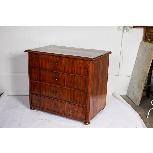 Neoclassical Large 19th Century Biedermeier Commode of Rosewood For Sale - Image 3 of 13