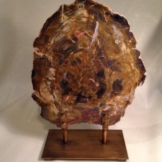 Modern Petrified Wood Sculpture Preview