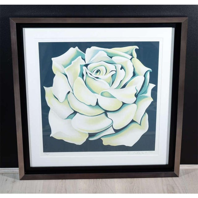 Vintage colored lithograph art by Lowell Nesbitt. Rose lithograph has hues of white, green, yellow and blue over a black...