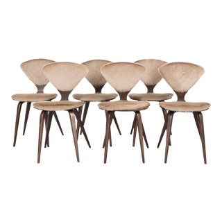 Set of 6 Norman Cherner for Plycraft Dining Chairs For Sale