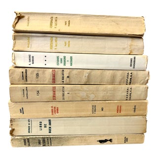 Classic Books in the Spanish - Set of 8 For Sale