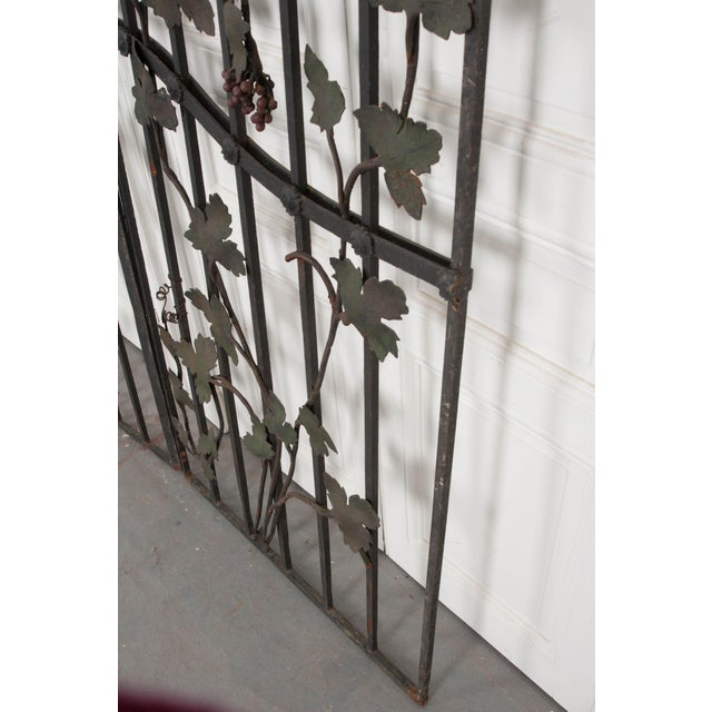 "Metal Pair of French Early 20th Century Painted Wrought-Iron ""Grapevine"" Gates For Sale - Image 7 of 13"