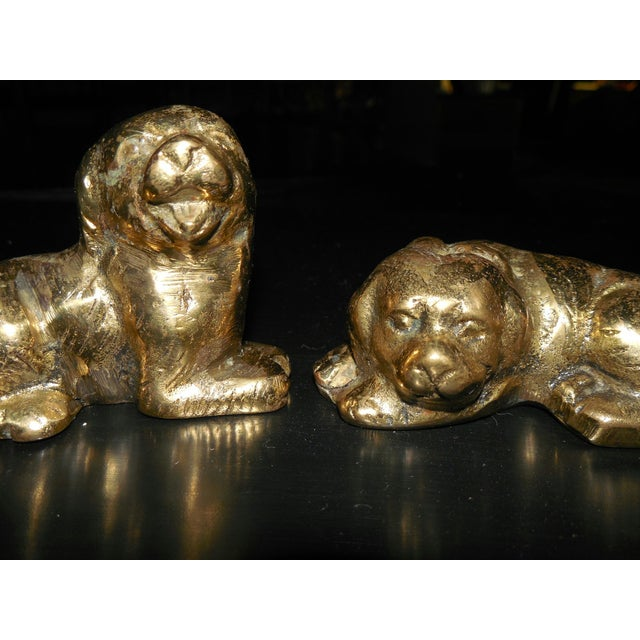 Petite Brass Pups - A Pair - Image 3 of 7