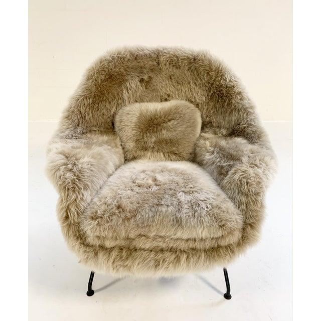 Vintage Eero Saarinen Womb Chair Restored in New Zealand Sheepskin For Sale In Saint Louis - Image 6 of 10