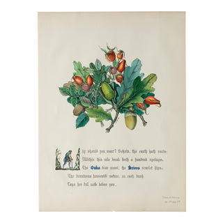 1846 Flowers of Shakespeare Hand-Colored Lithograph For Sale