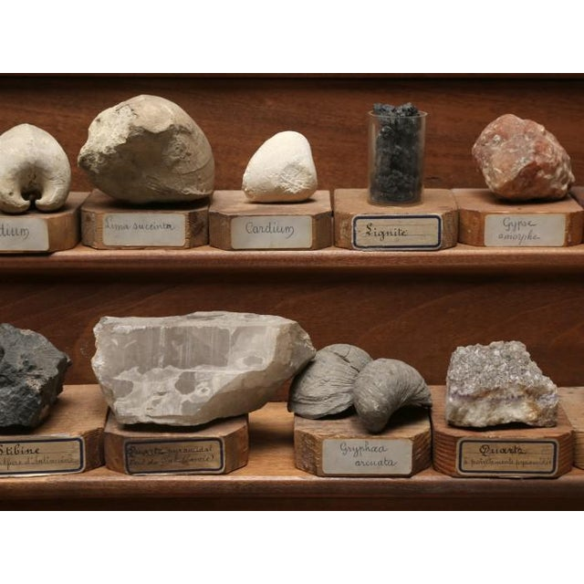 1891 French School Mineral Specimen Collection - 200 Pc. Set For Sale - Image 4 of 13
