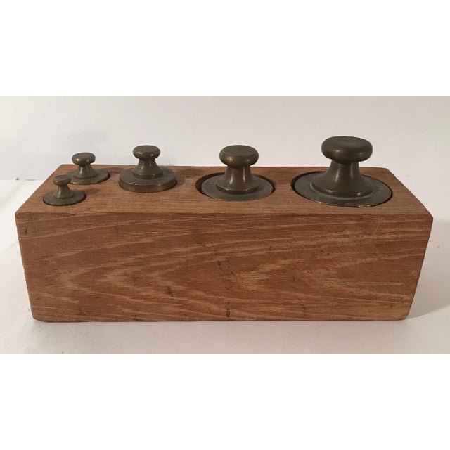 Early 20th Century Vintage Brass Weights in Wooden Case - Set of 5 For Sale - Image 5 of 11