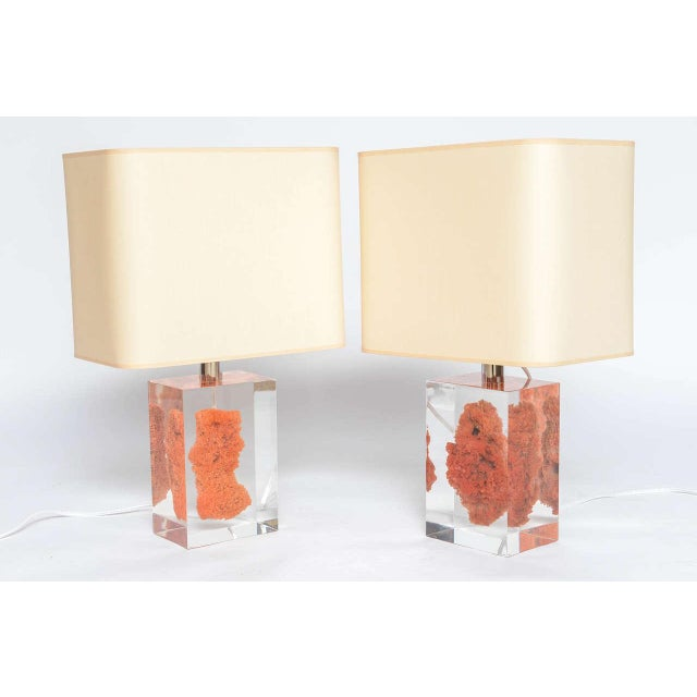 Natural Red Coral in Lucite Block Table Lamps - Sold Indivdually For Sale In Miami - Image 6 of 11