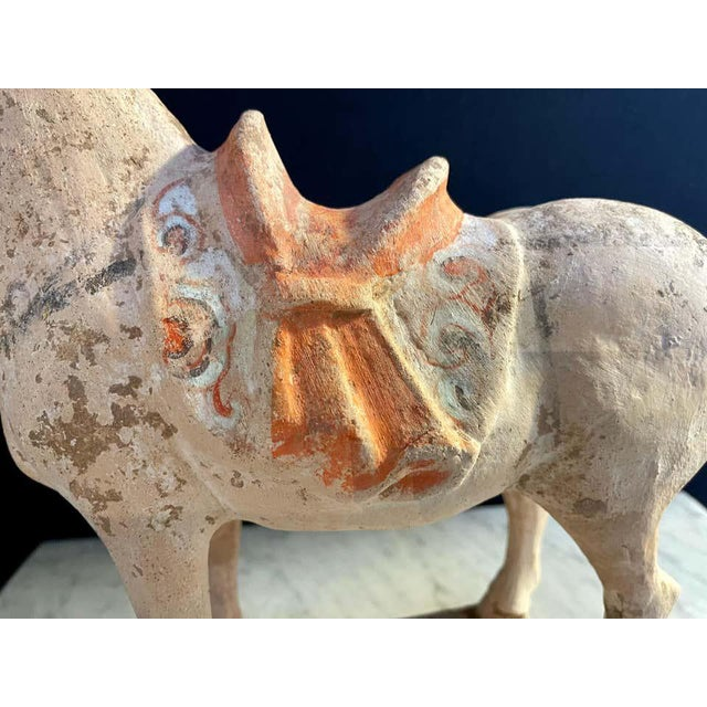 18th Century Antique Tang Pottery Horses - a Pair For Sale - Image 5 of 13