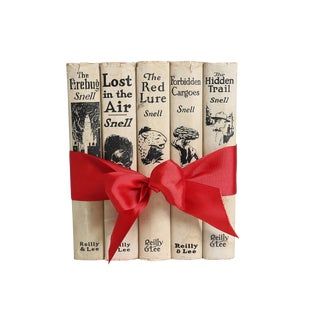 1920's Vintage Decorative Book Gift Set: Boys Mystery For Sale