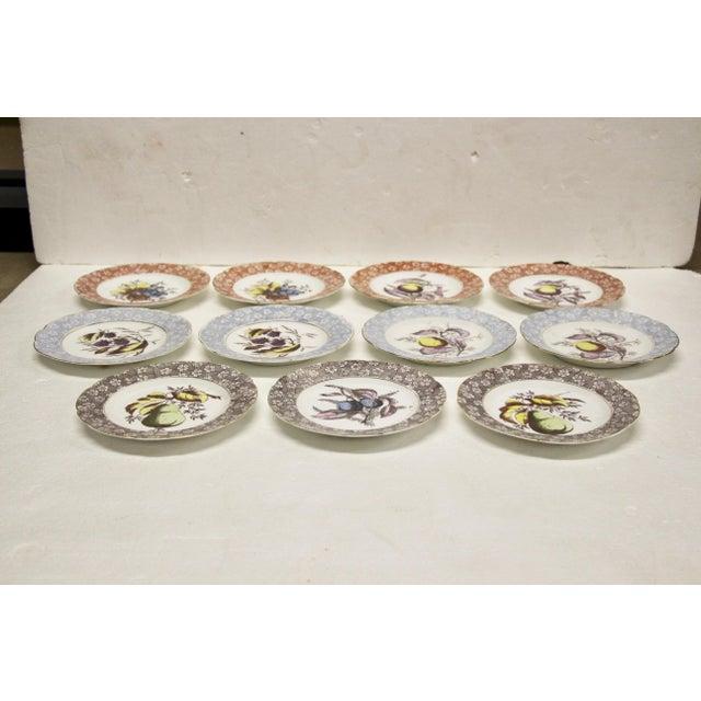 Antique Austrian Dessert Plates, S/11 For Sale - Image 4 of 8