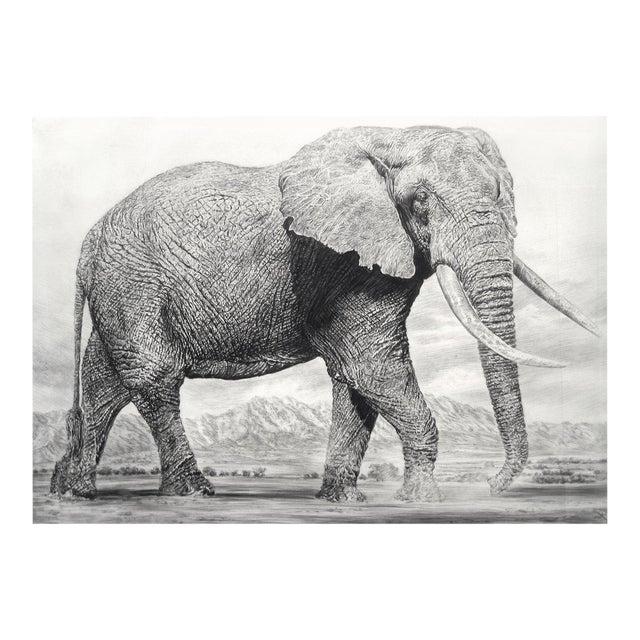 "Contemporary ""Elephant I"" Rick Shaefer Charcoal Print For Sale"