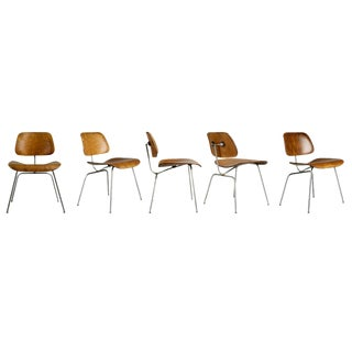 1947 Evans Production Walnut Dcm Chairs by Charles Eames - Set of 5 For Sale