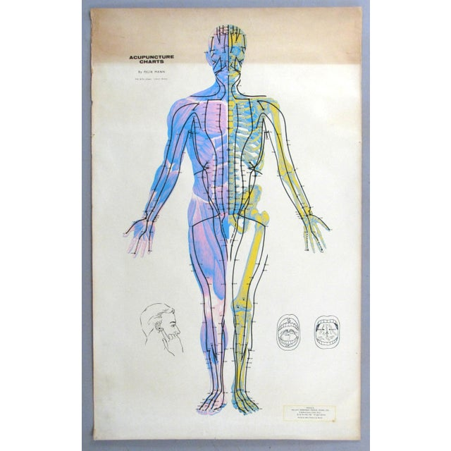 Illustration Vintage Acupuncture Serigraphs on Linen by Felix Mann - Set of 3 For Sale - Image 3 of 12