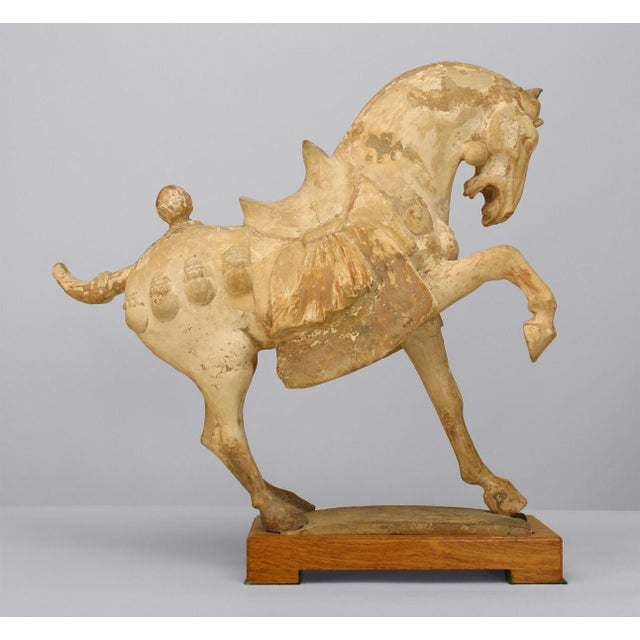 Asian Chinese (Tang Dynasty) unglazed clay (pottery) prancing horse with a saddle on a rectangular base (traces of...