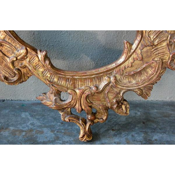 Mid 19th Century A Curvaceous Italian Rococo Style Cartouch-Shaped Carved Giltwood Mirror For Sale - Image 5 of 6