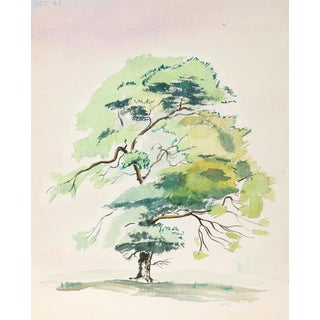 Eve Nethercott, Tree (P5.17), Watercolor on Paper For Sale