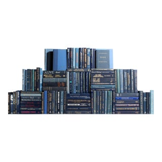 Modern Blue Book Wall, S/100