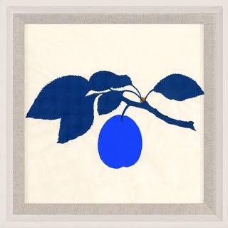 Bright Pomona Fruit 2, Framed Artwork For Sale