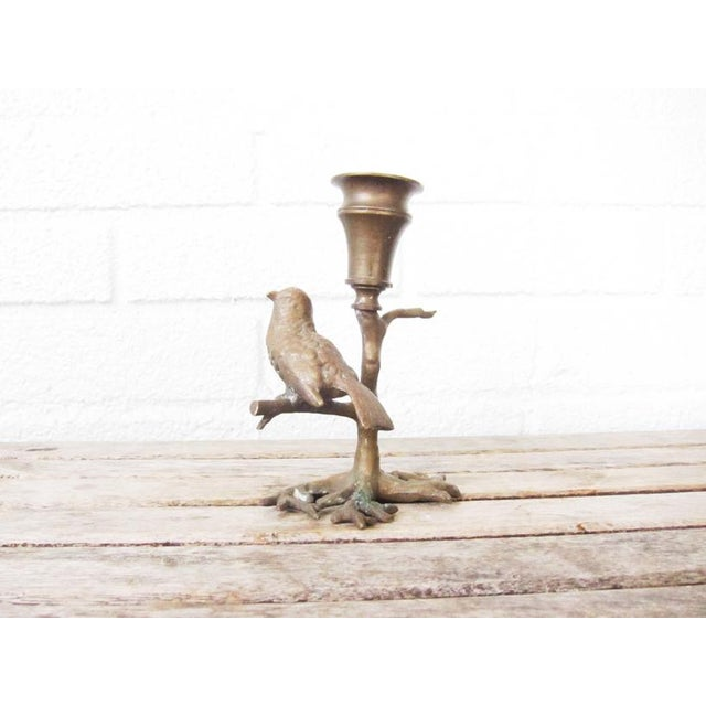 Antique Bronze Bird on Branch Candle Holder For Sale - Image 9 of 9