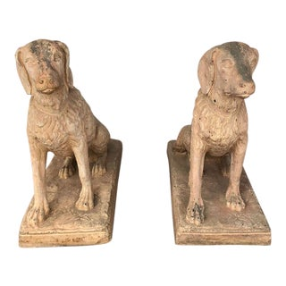 Terra-cotta Spaniel Dogs For Sale