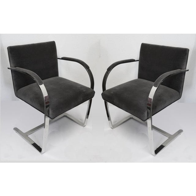 1930s Pair of Knoll Brno Chairs For Sale - Image 5 of 5