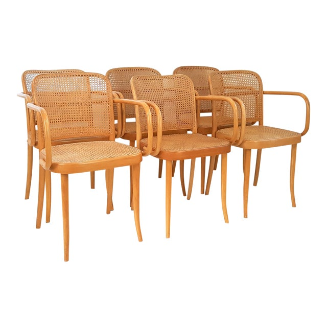 Vintage Stendig Cane Bentwood Dining Chairs- Set of 6 For Sale