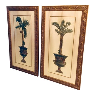 Vintage Potted Palms Prints in Gilt Frames - a Pair For Sale
