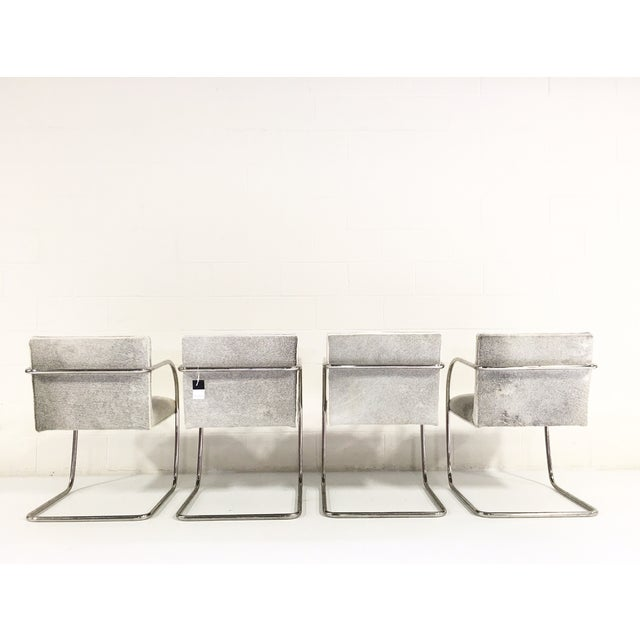 Brno Style Cowhide Chairs - Set of 4 - Image 6 of 7