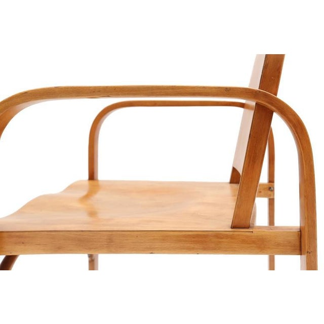 1930s Czech Plywood Chair Tatra For Sale - Image 5 of 8