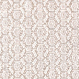 Scalamandre Manetta Fabric in Shell Pink Sample For Sale