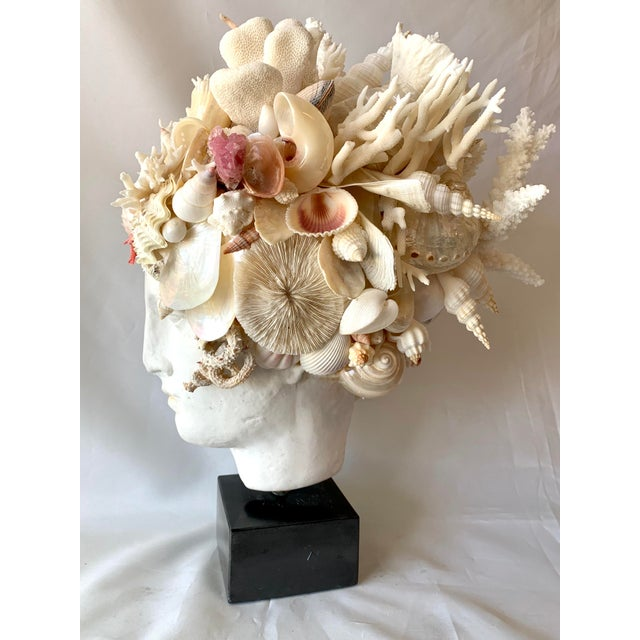 2020s Hygiea Shell Head Sculpture For Sale - Image 5 of 8