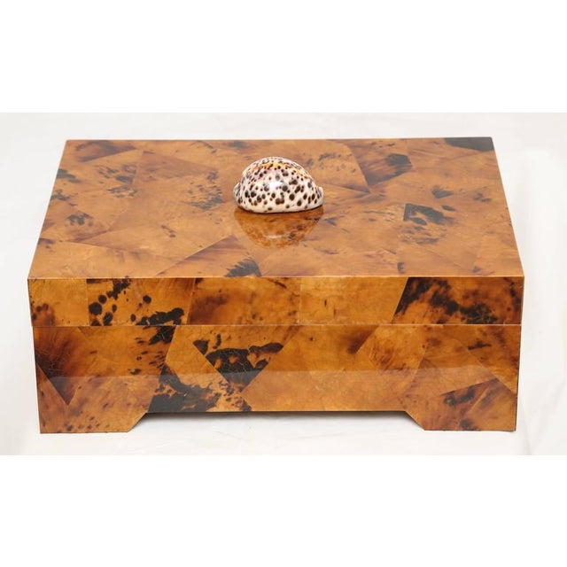 Original Eugenio Tavola by Oggetti decorative box made out of horn and shell over wood. The knob is a seashell. Marked...