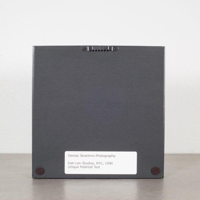 Modern Polaroid Test Image by Denise Tarantino for Dah Len Studios For Sale - Image 3 of 4