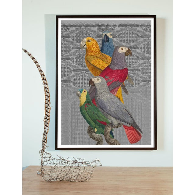 """Les Perroquet"" Parrot Collage Print Antique Birds by Capricorn Press For Sale - Image 4 of 4"
