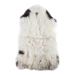 "Contemporary Long Wool Sheepskin Pelt, Handmade Rug - 2'0""x3'5"""