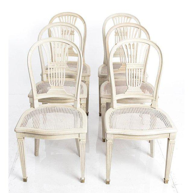 White Gustavian Wheat Sheaf Swedish Dining Chairs - Set of 6 For Sale - Image 8 of 8