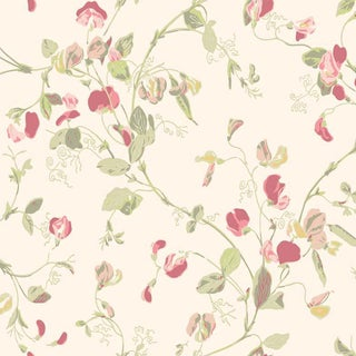 Cole & Son Sweet Pea Classic Botanical Style Wallpaper - 11 Yard Roll For Sale