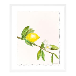 Lemon by Lia Burke Libaire in White Frame, Small Art Print For Sale
