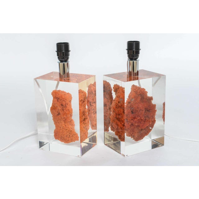 Natural Red Coral in Lucite Block Table Lamps - Sold Indivdually For Sale - Image 9 of 11