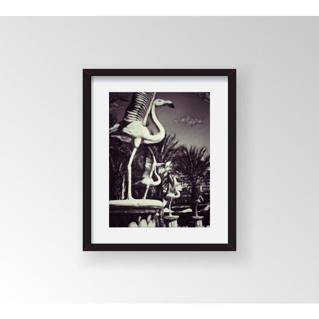 "Patricia McDonald ""Flamingoes"" Framed Photo Print - Image 2 of 3"