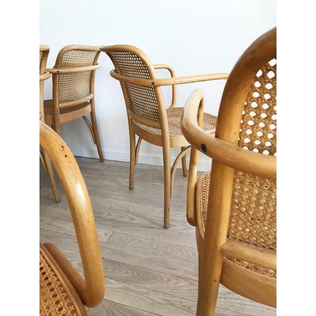 "Mid-Century Josef Hoffmann ""Prague"" 811 Cane & Bentwood Armchairs - Set of 10 - Image 4 of 11"