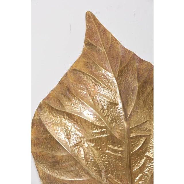 1 of 4 Huge Rhaburb Leaf Brass Wall Lights or Sconces by Tommaso Barbi For Sale - Image 11 of 13