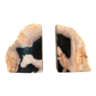 Transitional Noir Petrified Wood Bookends - a Pair For Sale