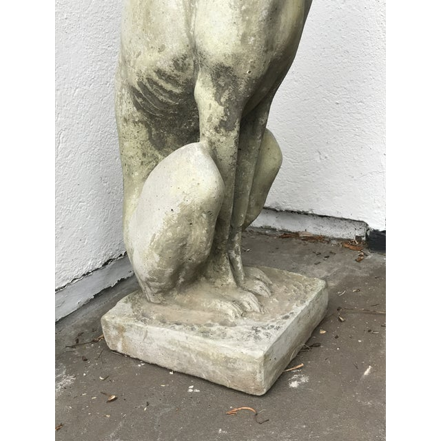 Whippet Dog Statues- a Pair For Sale - Image 9 of 12