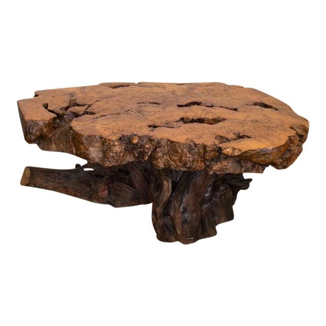Live Edge Maple Burlwood Coffee Table - Image 1 of 11