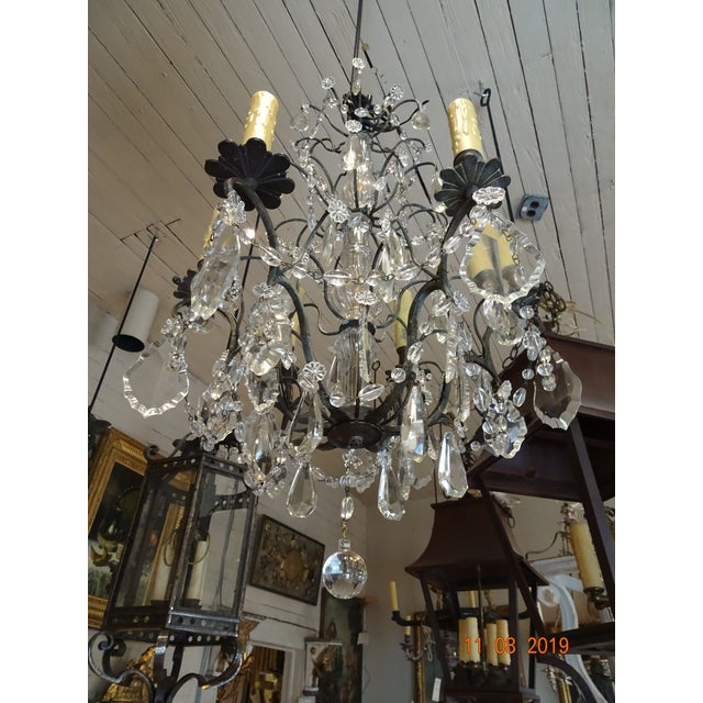 Small Vintage French Crystal Chandelier For Sale - Image 13 of 13