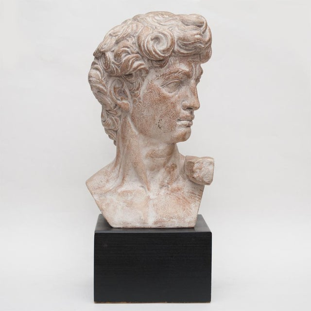 Mid Century Ceramic Bust of David For Sale - Image 12 of 13