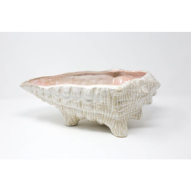 "Pink Large 15"" Conch Shell Bowl by Pottery Barn For Sale - Image 8 of 13"