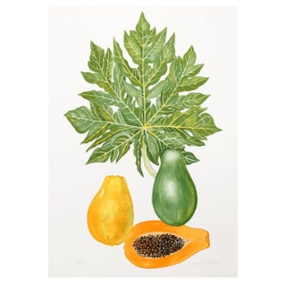 Marion Sheehan - Papaya Lithograph For Sale